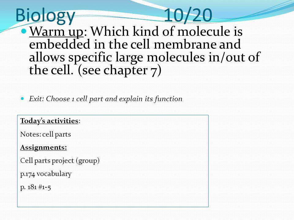 Biology 10/20