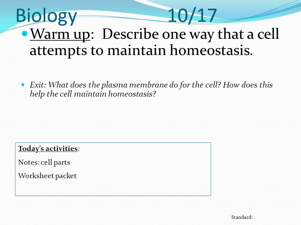 Biology 10/17 Warm up: Describe one way that a cell attempts to maintain homeostasis.