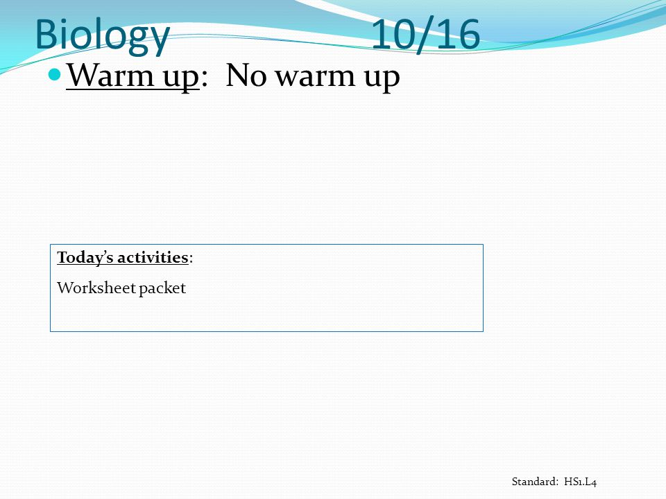 Biology 10/16 Warm up: No warm up Today's activities: Worksheet packet