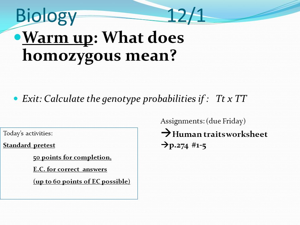 Biology 12/1 Warm up: What does homozygous mean