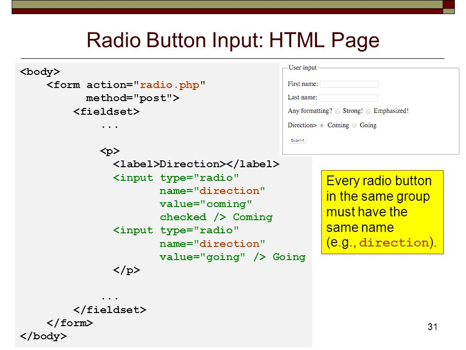 Radio Button Input: HTML Page