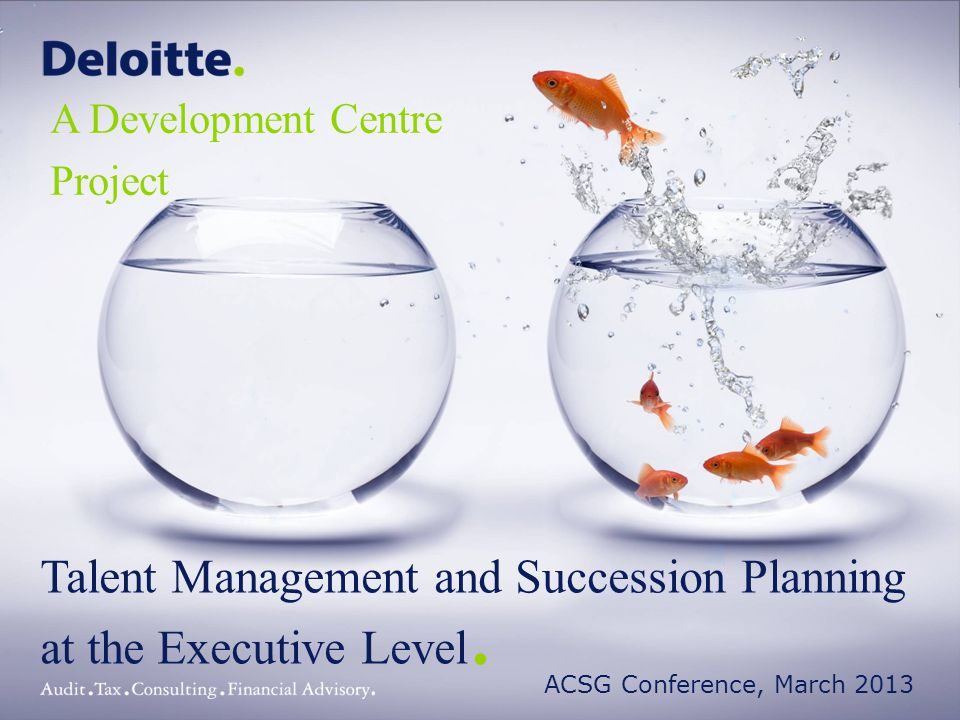 Talent Management and Succession Planning at the Executive Level.