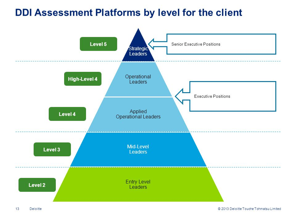 DDI Assessment Platforms by level for the client