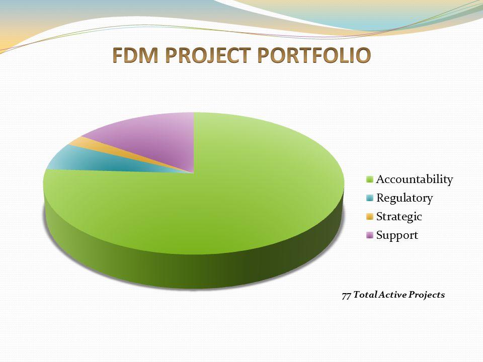 FDM PROJECT PORTFOLIO Definitions: