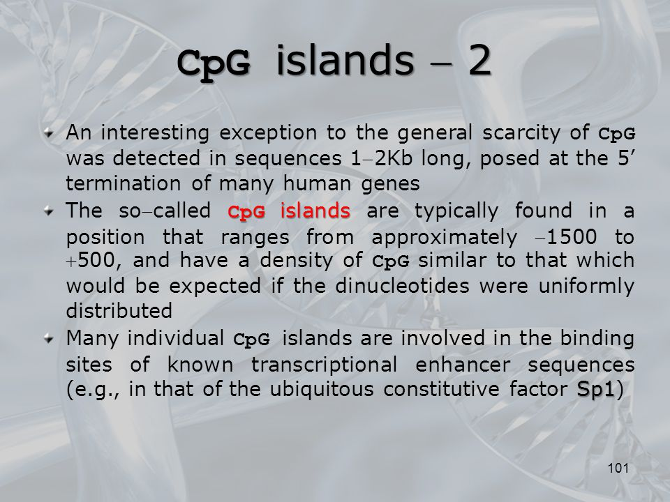 CpG islands  2