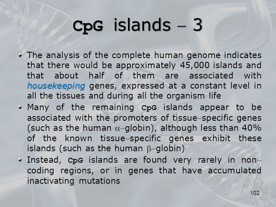 CpG islands  3