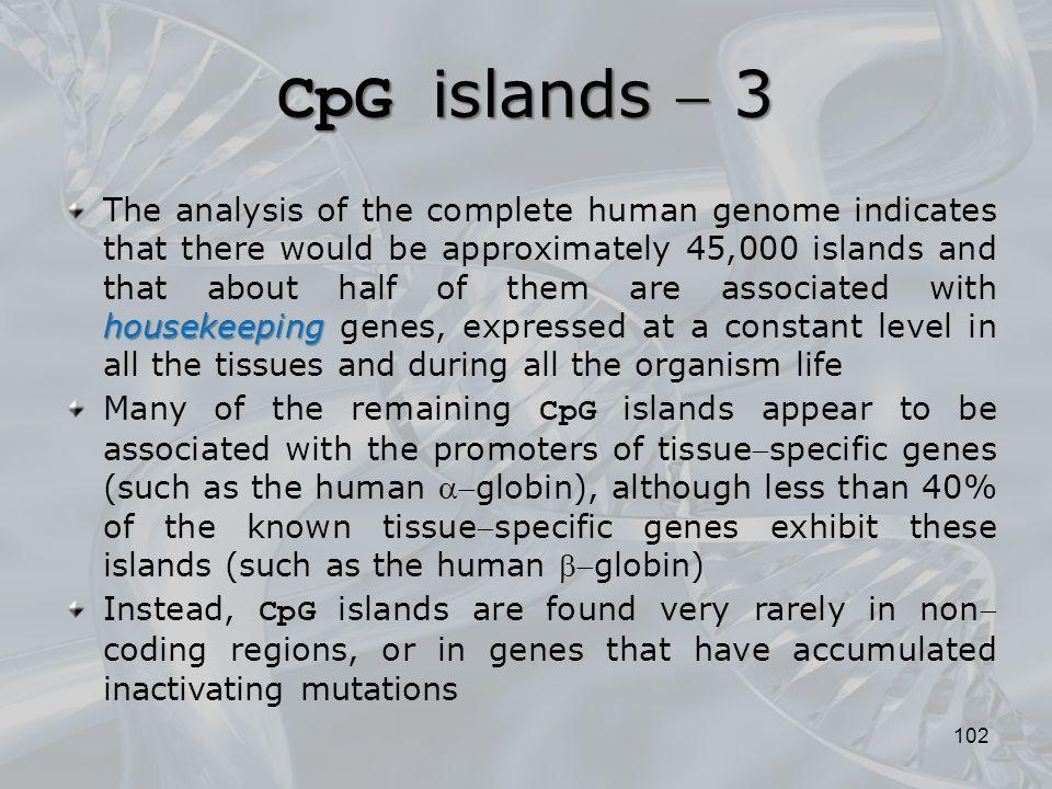 CpG islands  3