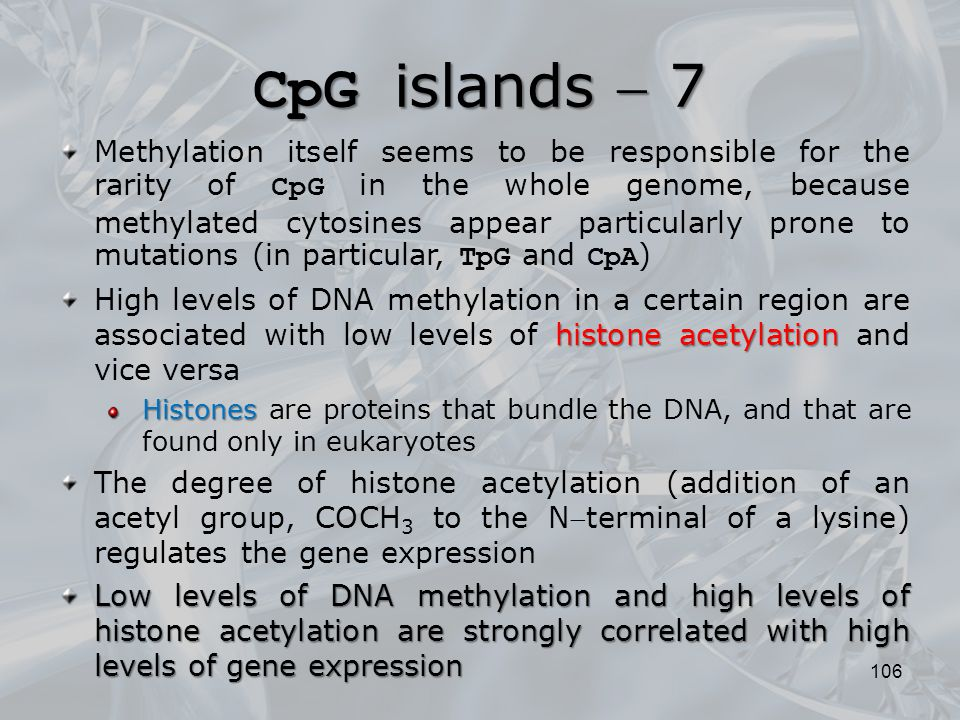 CpG islands  7