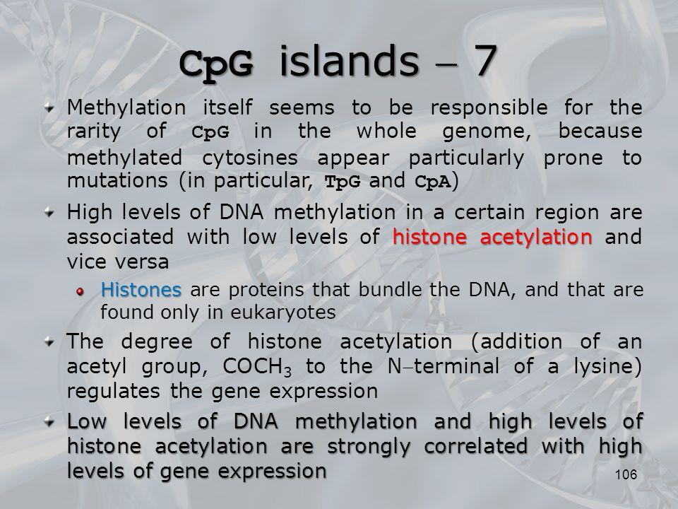 CpG islands  7