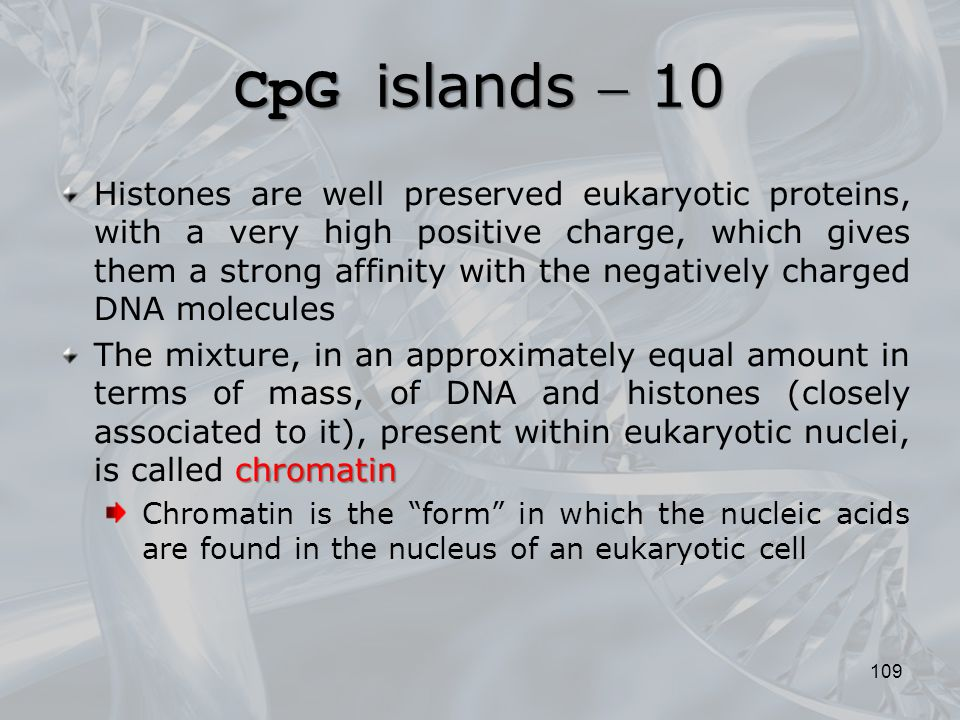 CpG islands  10