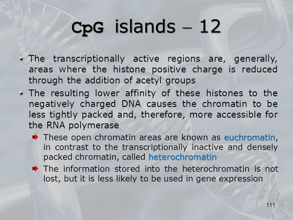 CpG islands  12