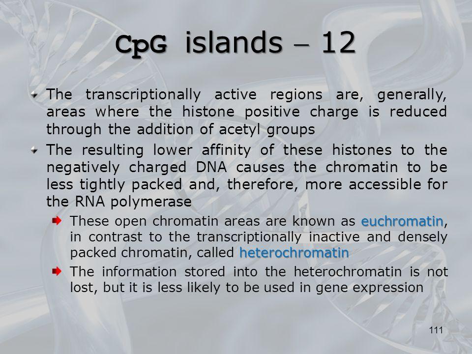 CpG islands  12
