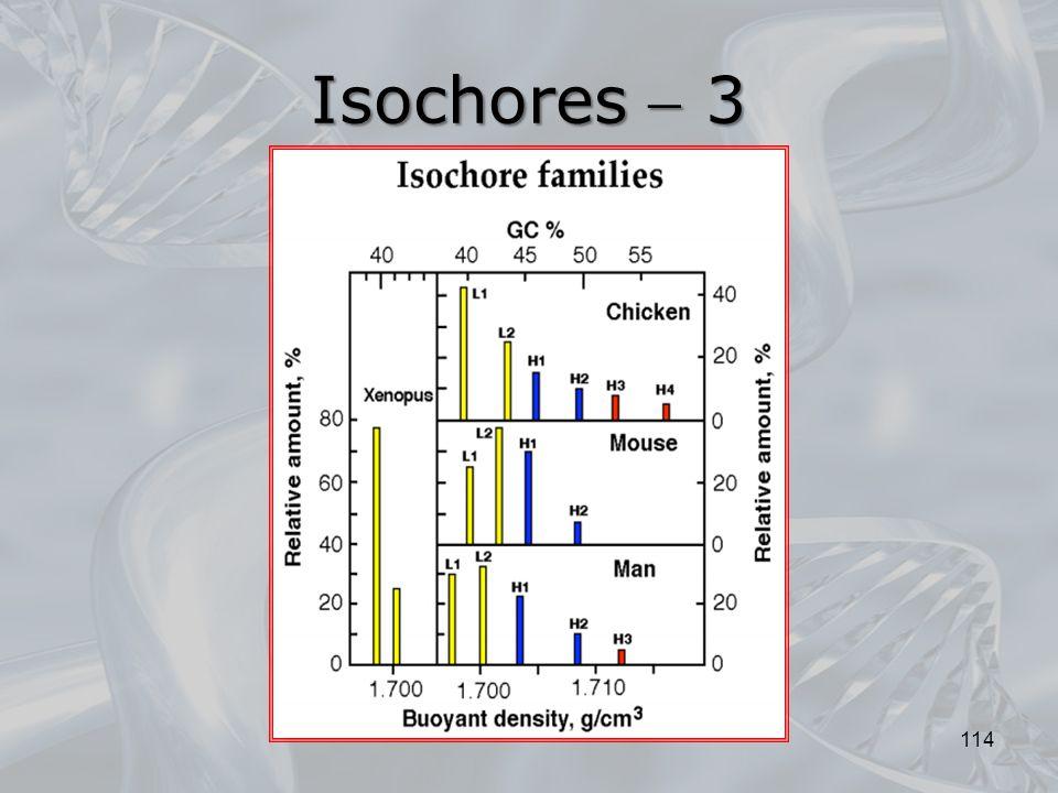 Isochores  3