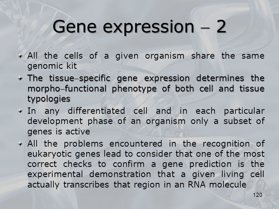 Gene expression  2 All the cells of a given organism share the same genomic kit.