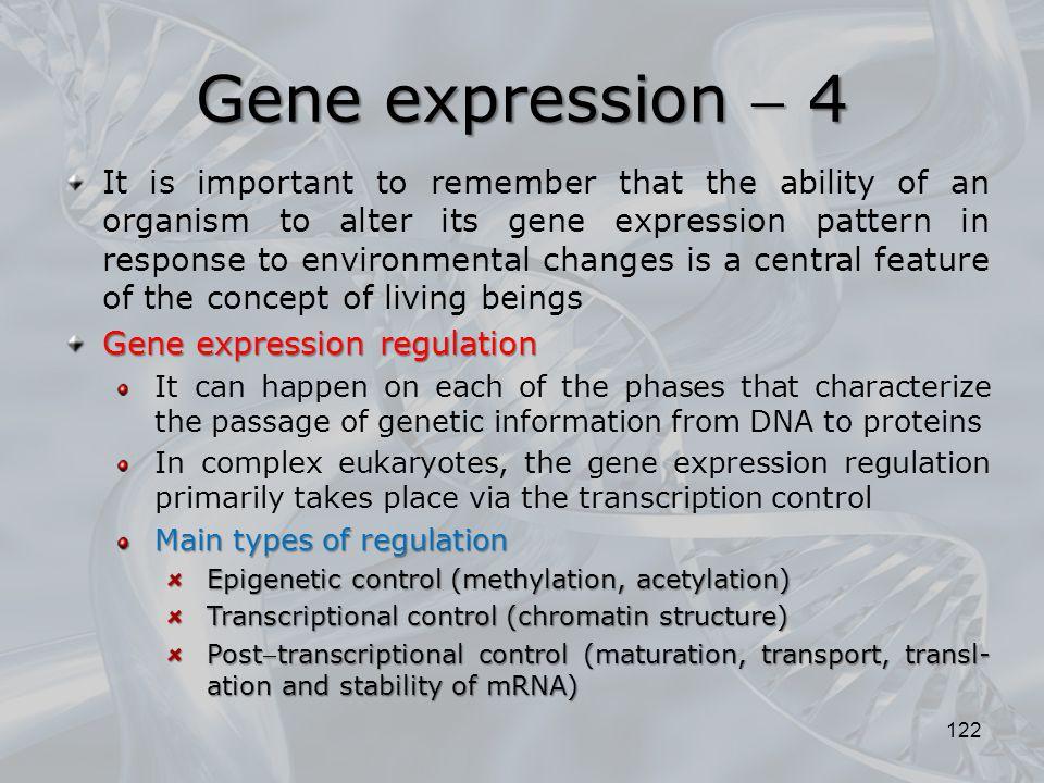 Gene expression  4