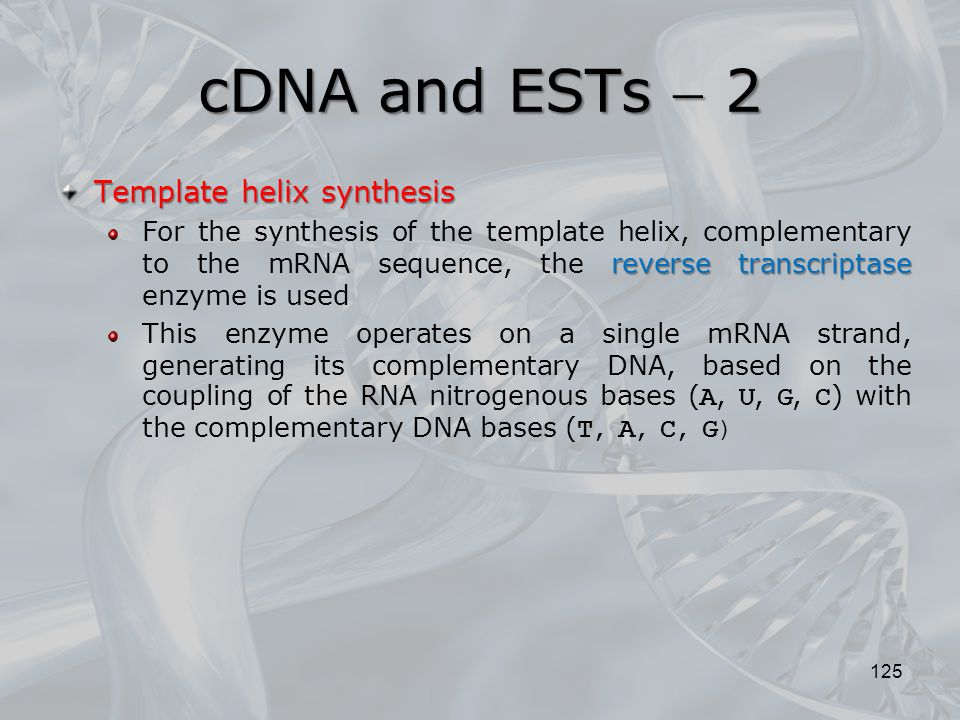 cDNA and ESTs  2 Template helix synthesis