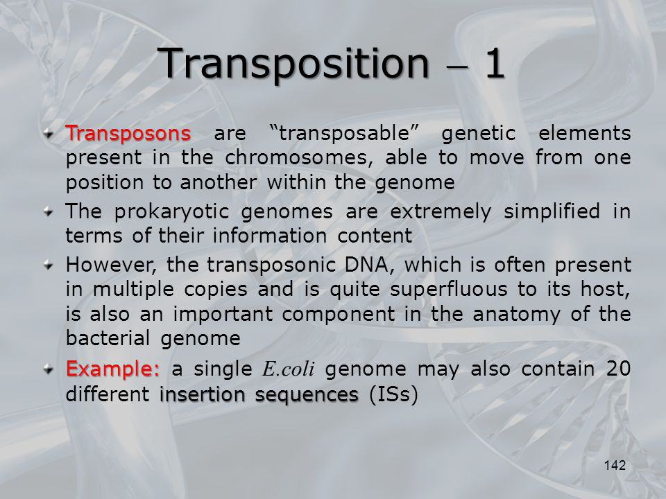 Transposition  1