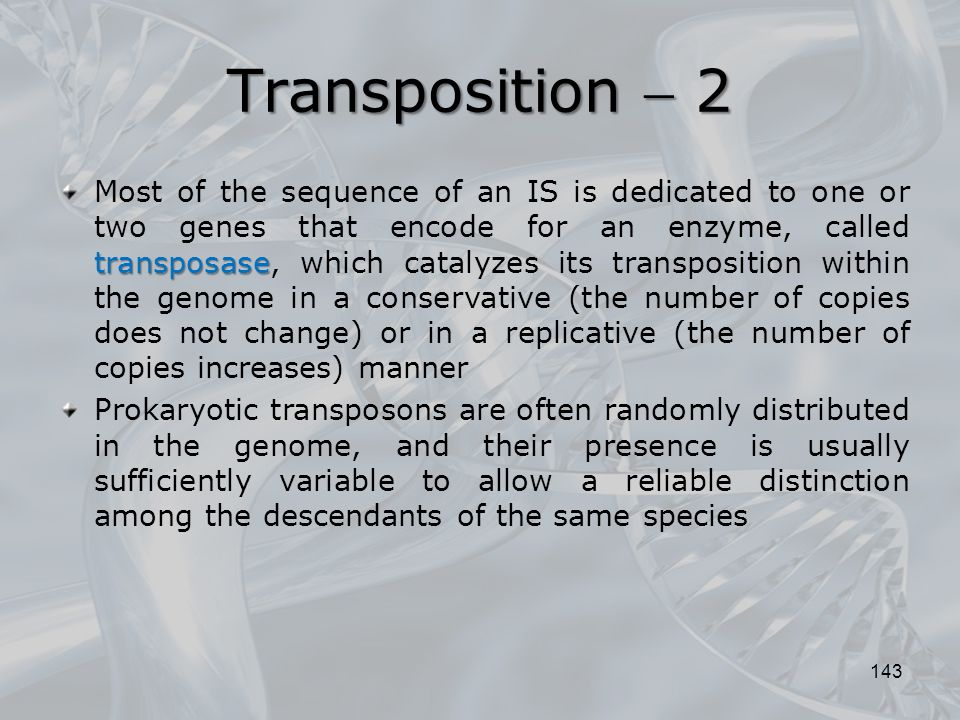 Transposition  2