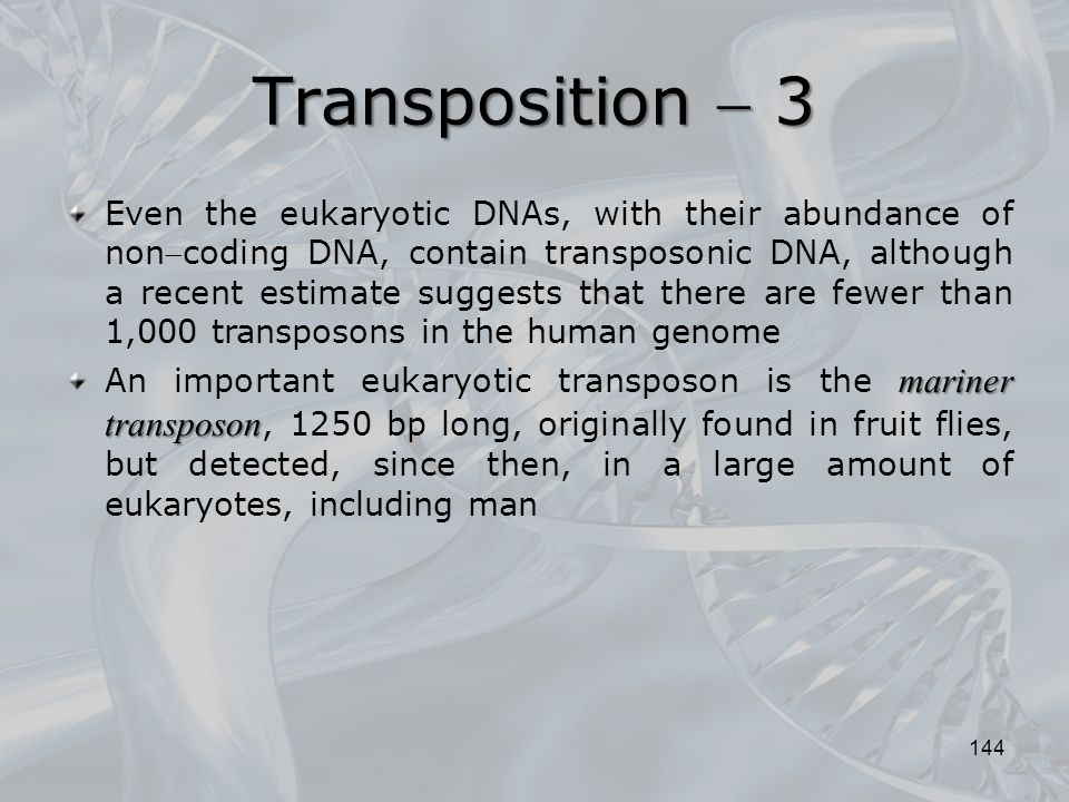 Transposition  3