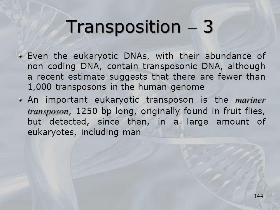 Transposition  3