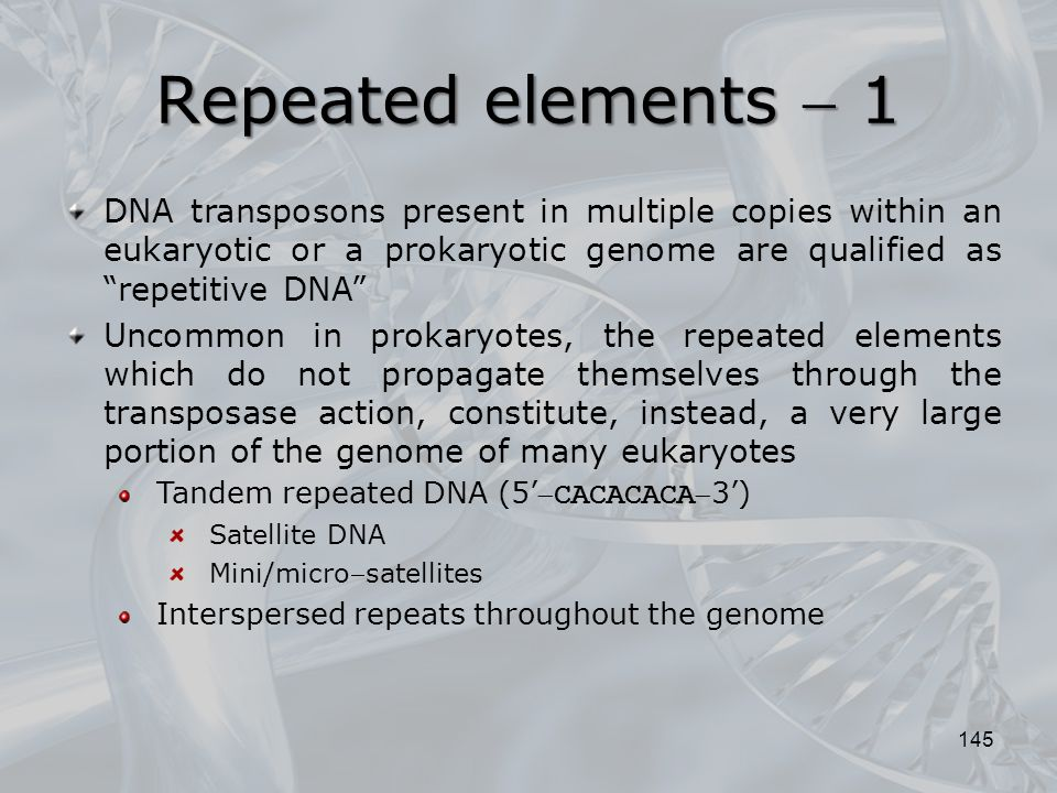 Repeated elements  1 DNA transposons present in multiple copies within an eukaryotic or a prokaryotic genome are qualified as repetitive DNA