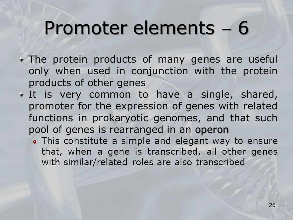 Promoter elements  6 The protein products of many genes are useful only when used in conjunction with the protein products of other genes.