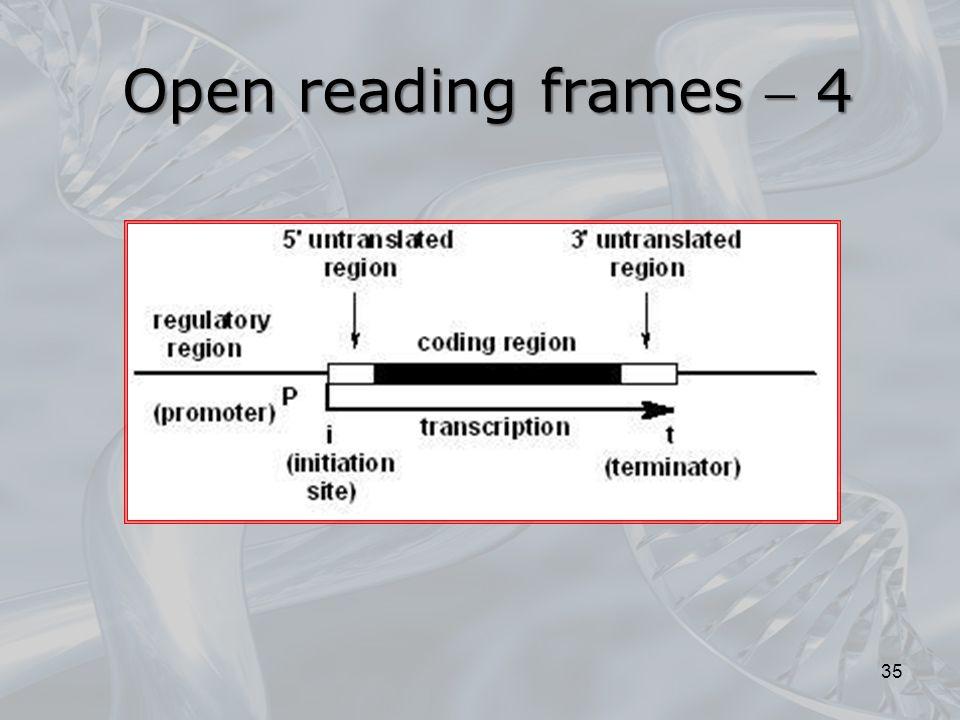 Open reading frames  4
