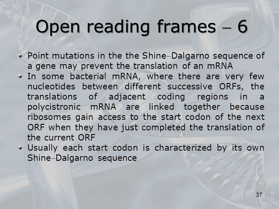 Open reading frames  6 Point mutations in the the ShineDalgarno sequence of a gene may prevent the translation of an mRNA.