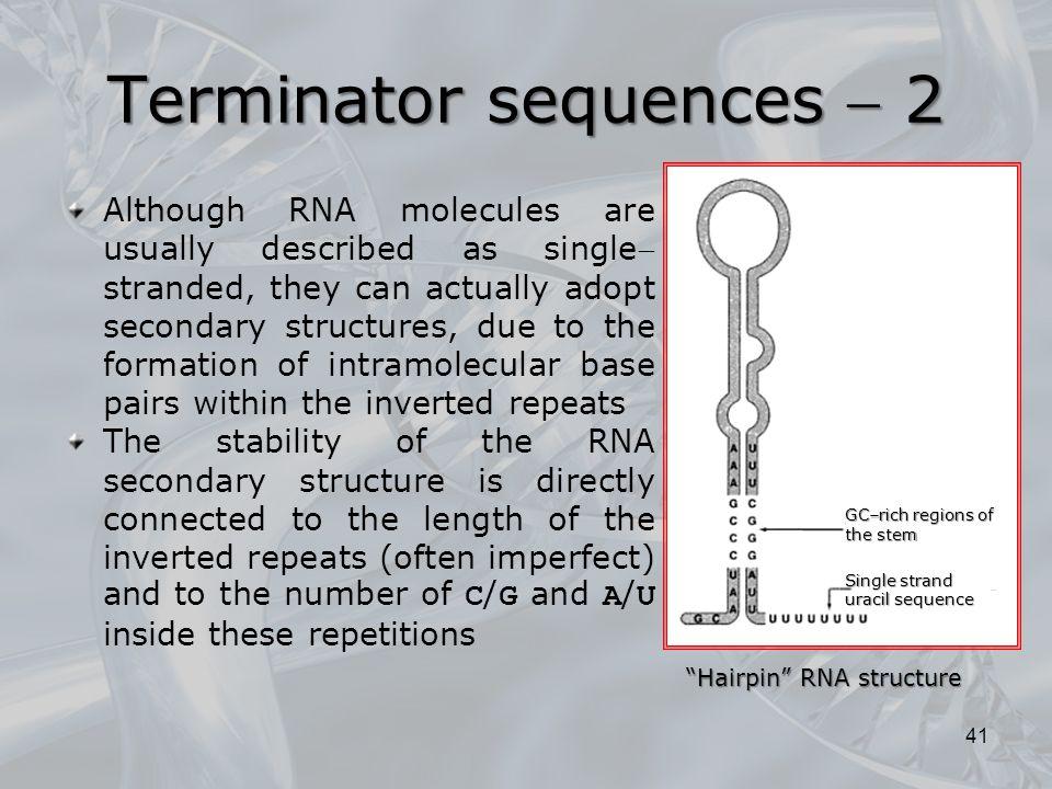 Terminator sequences  2