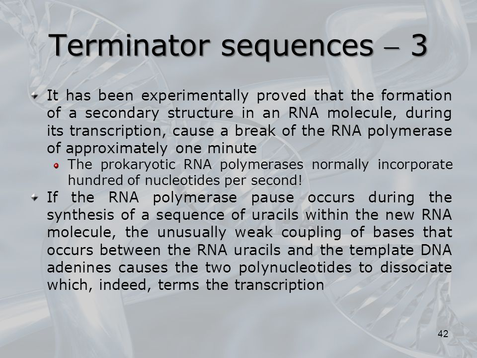 Terminator sequences  3