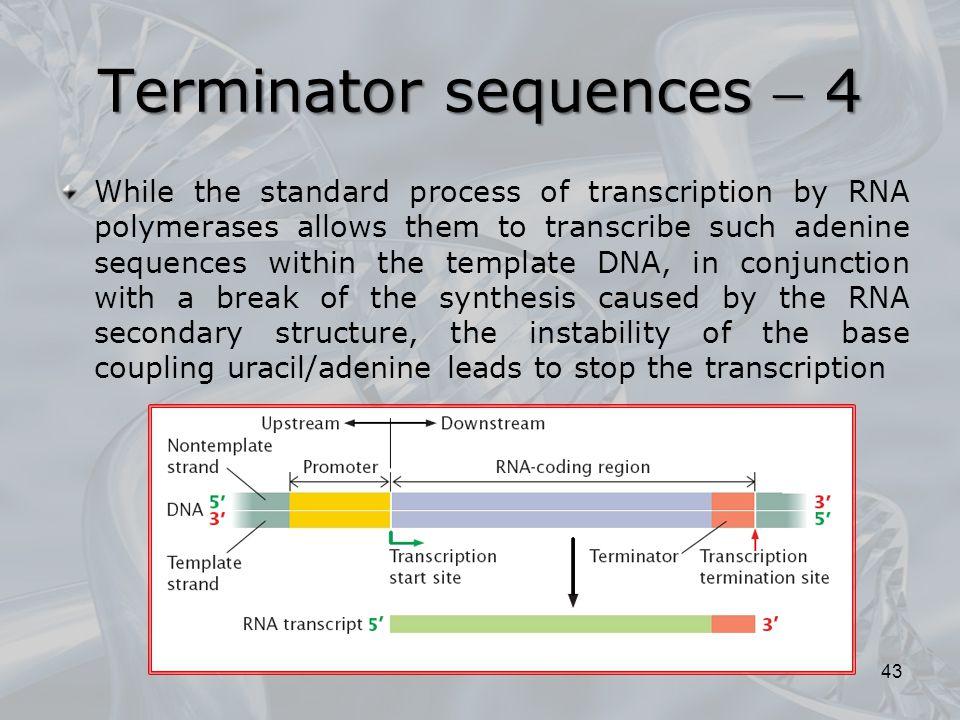 Terminator sequences  4