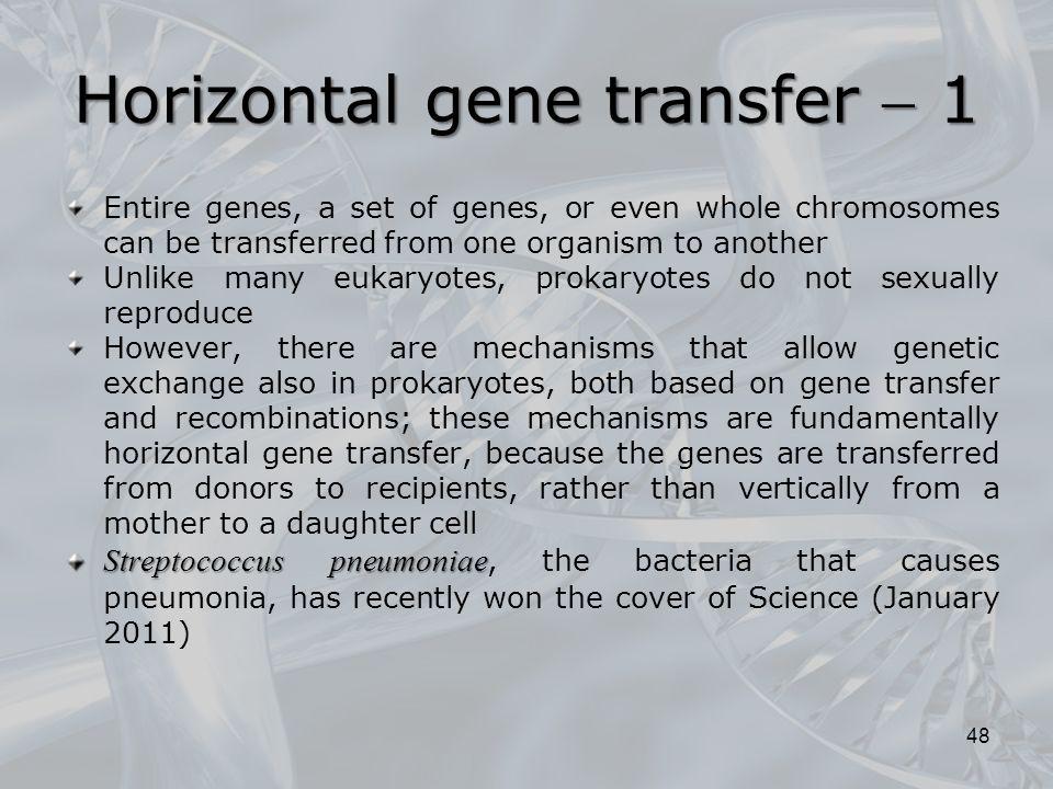 Horizontal gene transfer  1