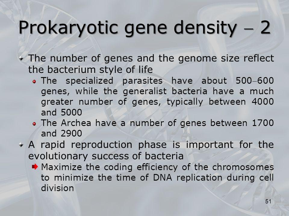 Prokaryotic gene density  2