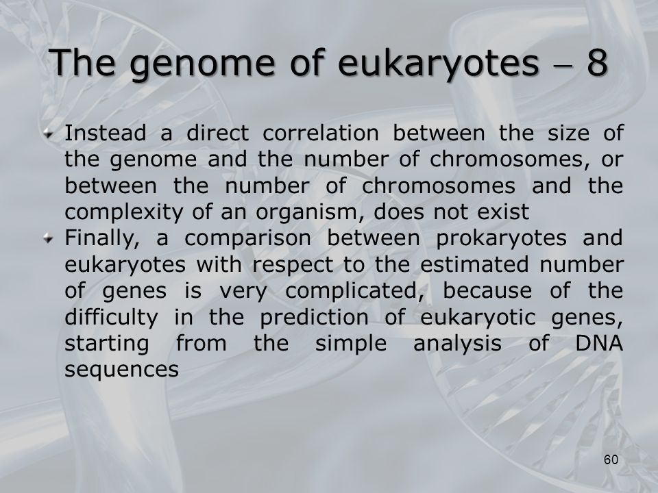 The genome of eukaryotes  8