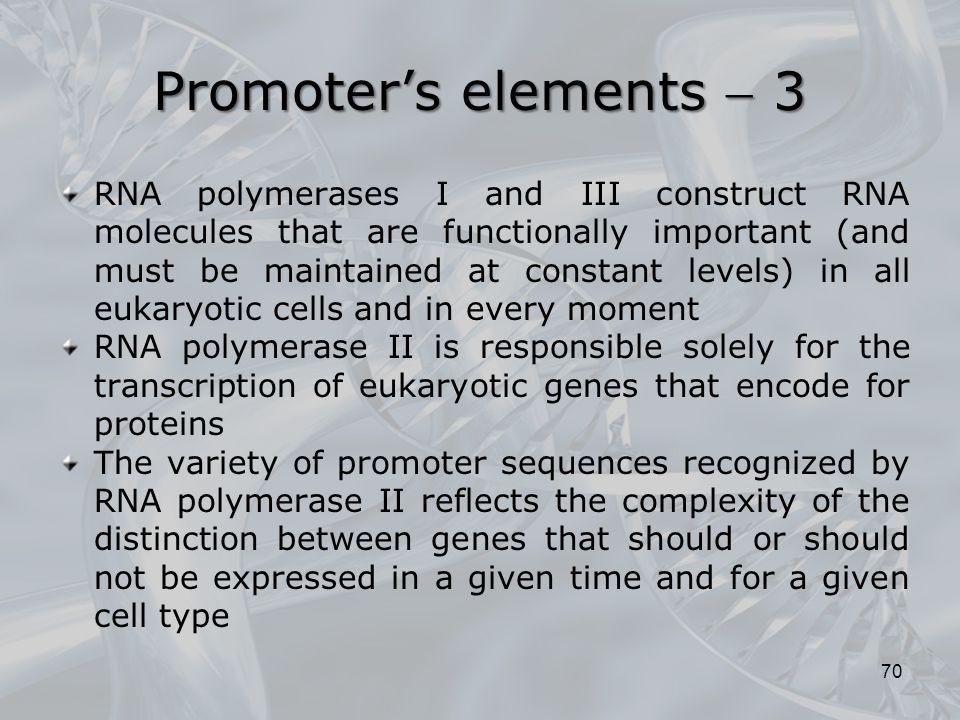 Promoter's elements  3