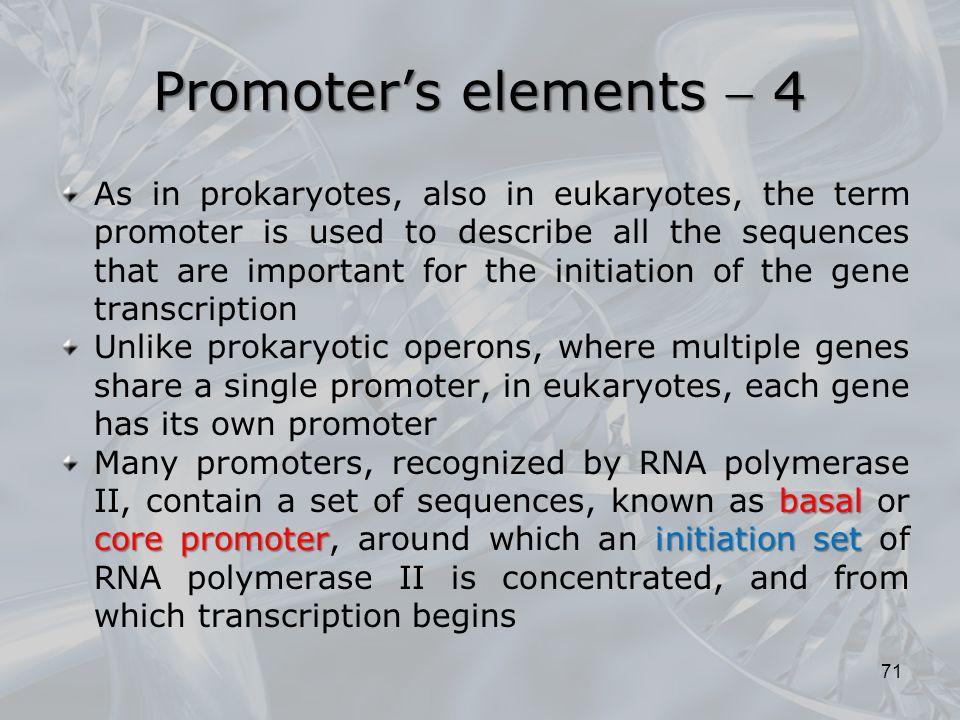 Promoter's elements  4