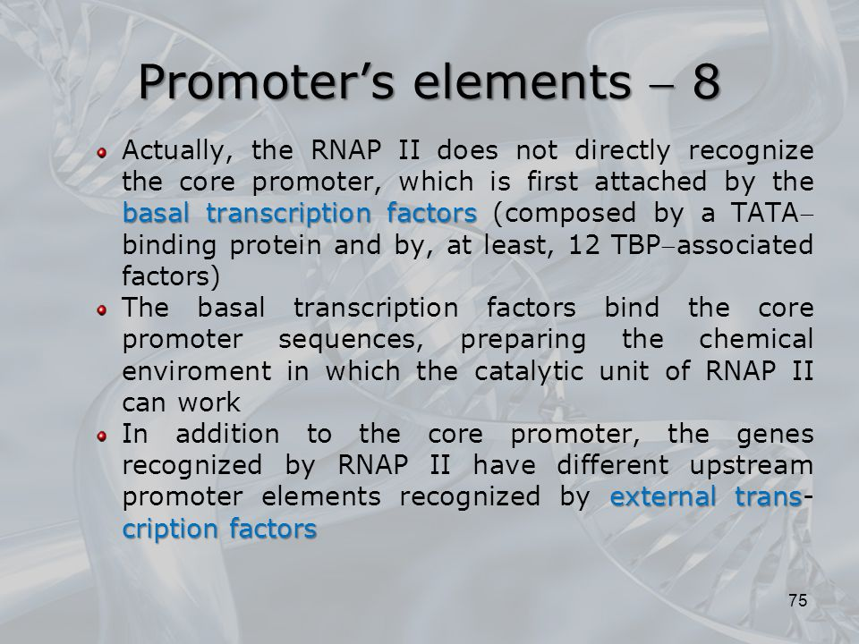 Promoter's elements  8