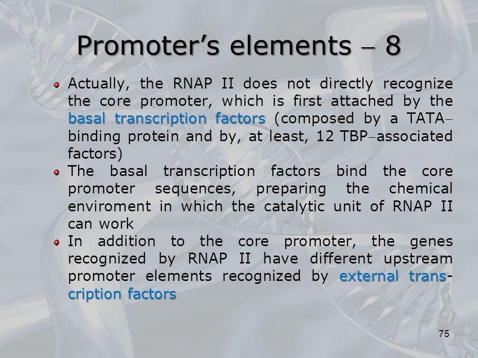 Promoter's elements  8