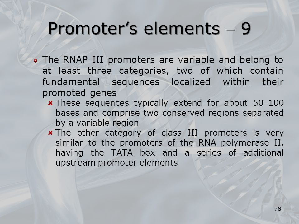 Promoter's elements  9