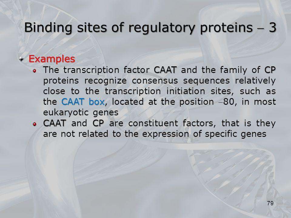 Binding sites of regulatory proteins  3