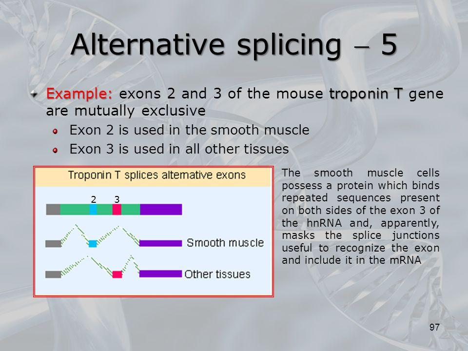 Alternative splicing  5