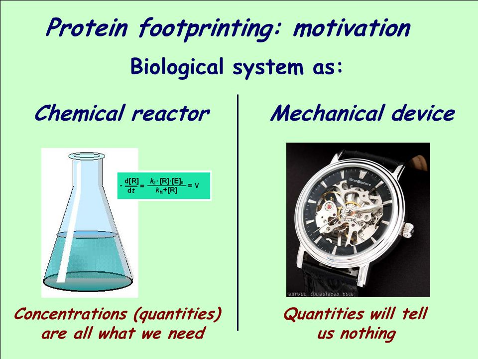 Protein footprinting: motivation