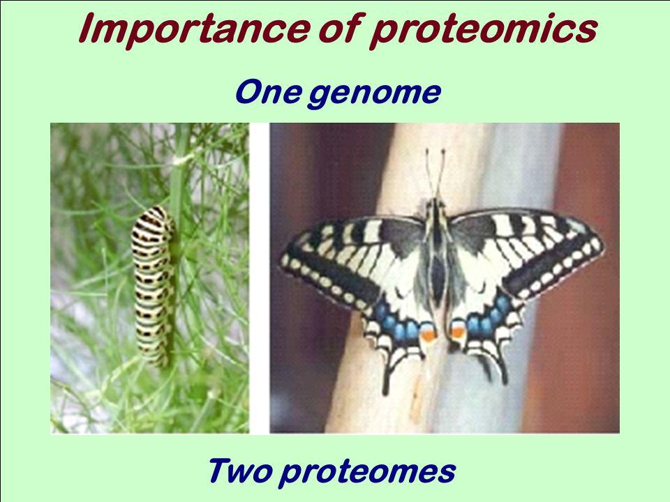 Importance of proteomics
