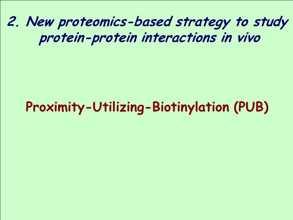 2. New proteomics-based strategy to study
