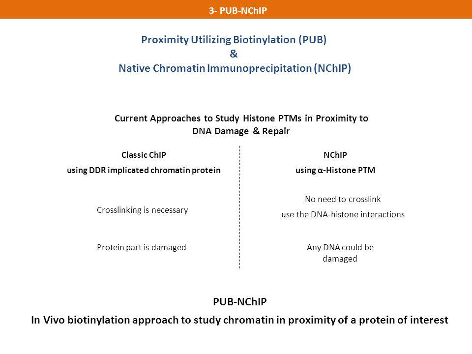 Proximity Utilizing Biotinylation (PUB) &
