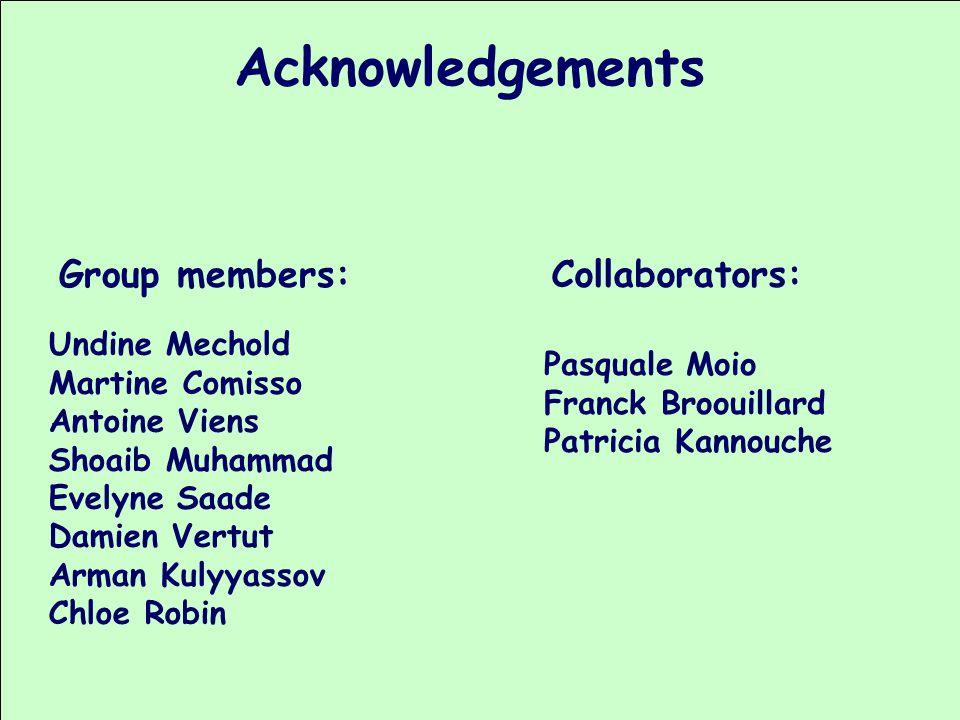 Acknowledgements Group members: Collaborators: Undine Mechold