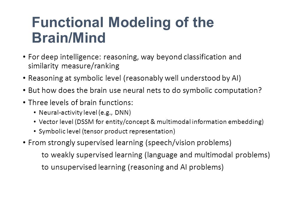 Functional Modeling of the Brain/Mind