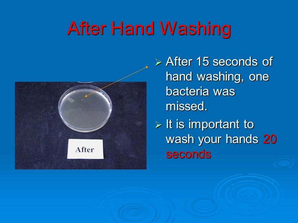 After Hand Washing After 15 seconds of hand washing, one bacteria was missed.