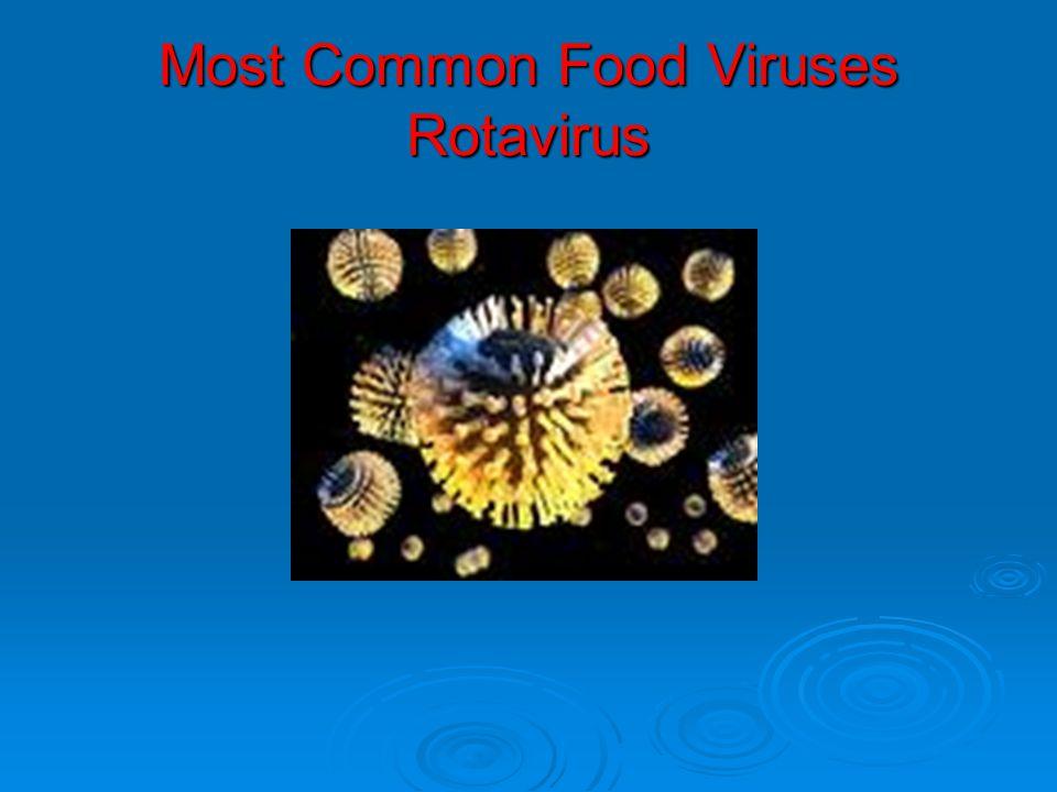 Most Common Food Viruses Rotavirus