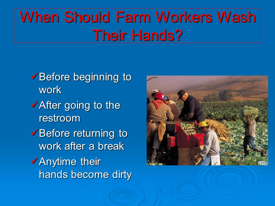 When Should Farm Workers Wash Their Hands